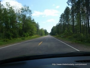 Picture of a long straight highway with tall trees on both sides
